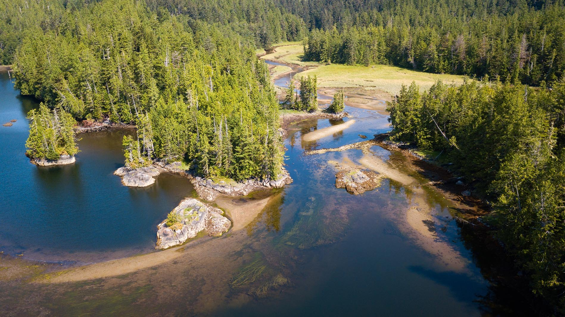 Great Bear Rainforest - Canada